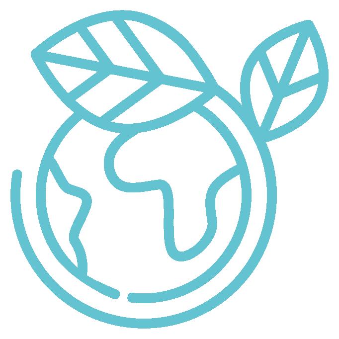 EINF Reporte de información no financiera